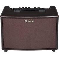 Roland AC-60 (Rosewood)