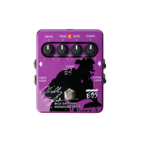 EBS Billys Sheehan Signature Drive